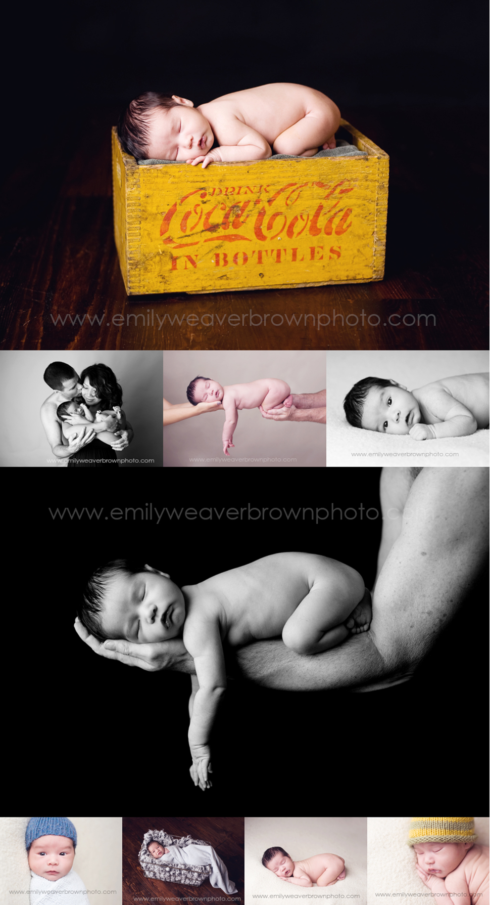 seattle.newborn.photographer2