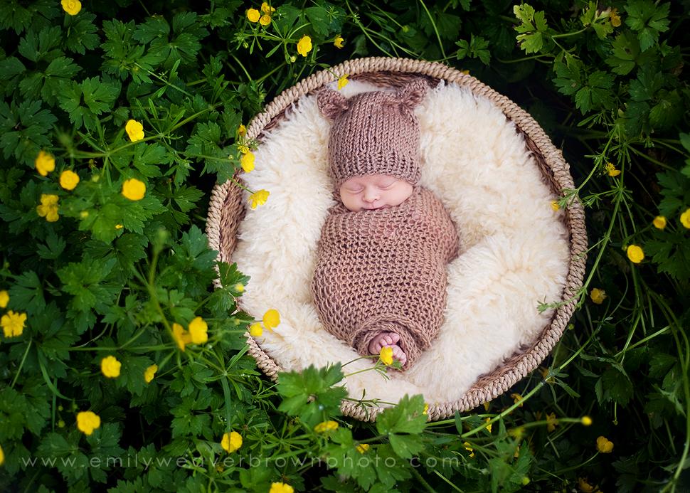 sunshine and buttercups {Seattle Newborn Photographer}