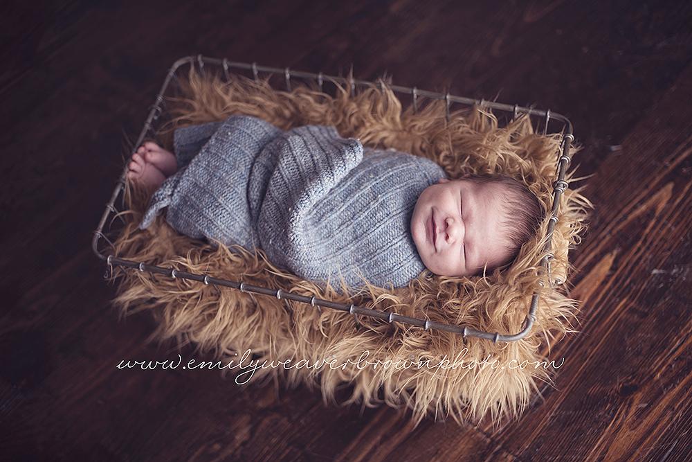 Darling Finnley | Seattle Newborn Photographer
